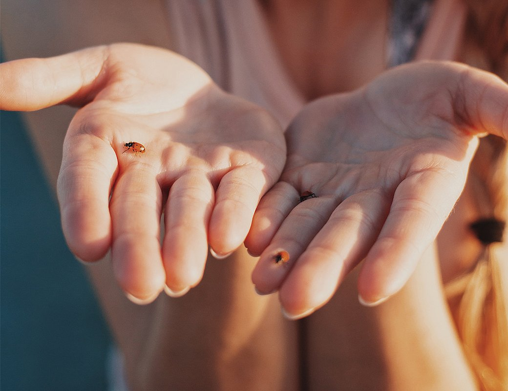 Sada Krásné ruce
